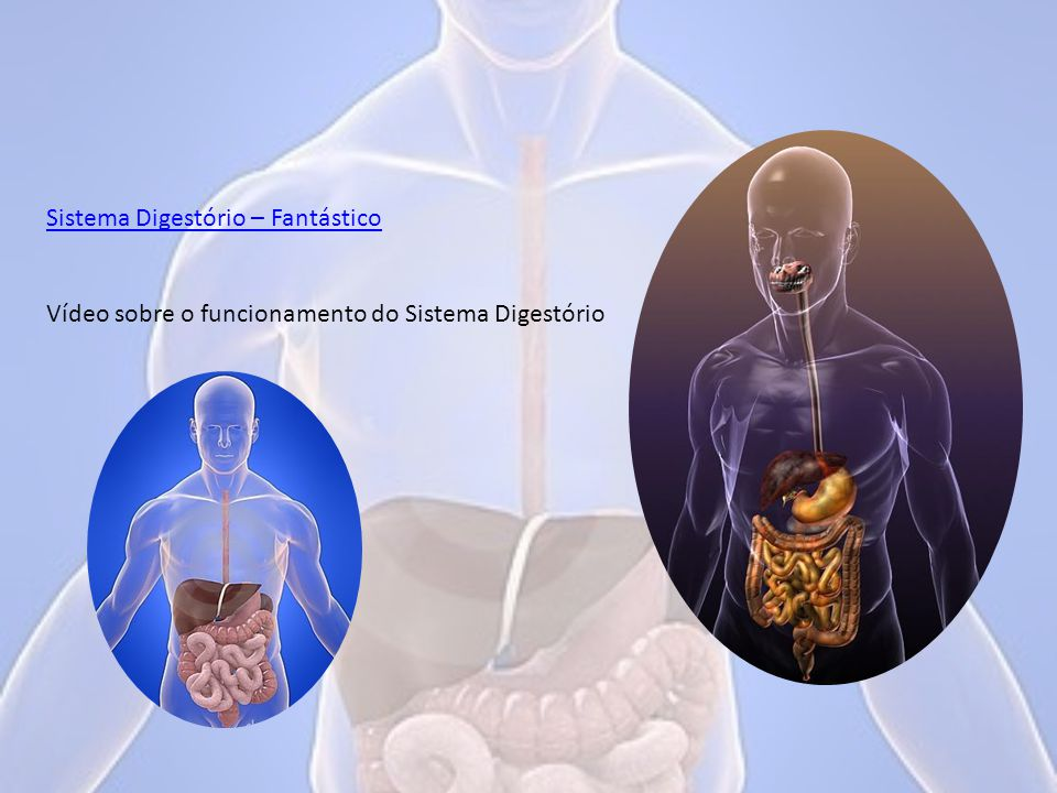 Sistema Digestório – Fantástico