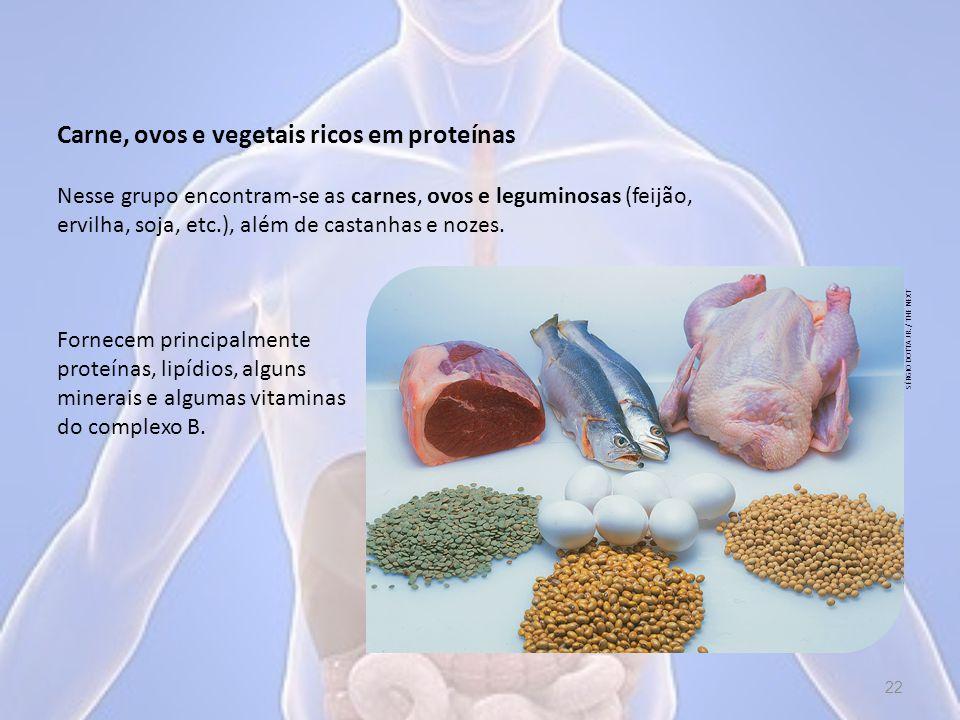 Carne, ovos e vegetais ricos em proteínas