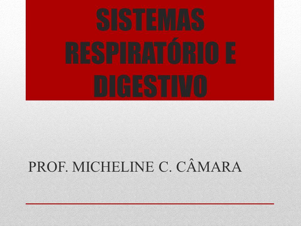 SISTEMAS RESPIRATÓRIO E DIGESTIVO