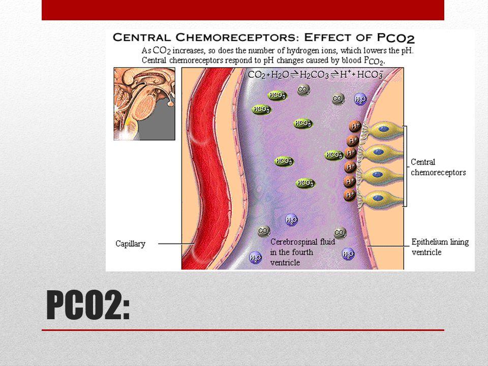 PCO2: