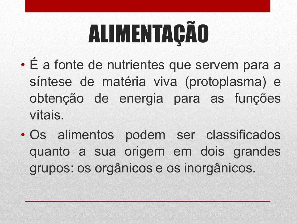ALIMENTAÇÃO É a fonte de nutrientes que servem para a síntese de matéria viva (protoplasma) e obtenção de energia para as funções vitais.