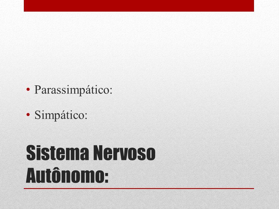 Sistema Nervoso Autônomo: