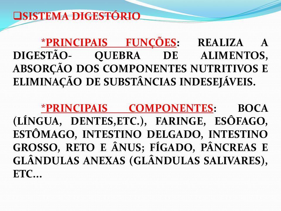 SISTEMA DIGESTÓRIO *PRINCIPAIS FUNÇÕES: REALIZA A DIGESTÃO- QUEBRA DE ALIMENTOS, ABSORÇÃO DOS COMPONENTES NUTRITIVOS E ELIMINAÇÃO DE SUBSTÂNCIAS INDESEJÁVEIS. *PRINCIPAIS COMPONENTES: BOCA (LÍNGUA, DENTES,ETC.), FARINGE, ESÔFAGO, ESTÔMAGO, INTESTINO DELGADO, INTESTINO GROSSO, RETO E ÂNUS; FÍGADO, PÂNCREAS E GLÂNDULAS ANEXAS (GLÂNDULAS SALIVARES), ETC...