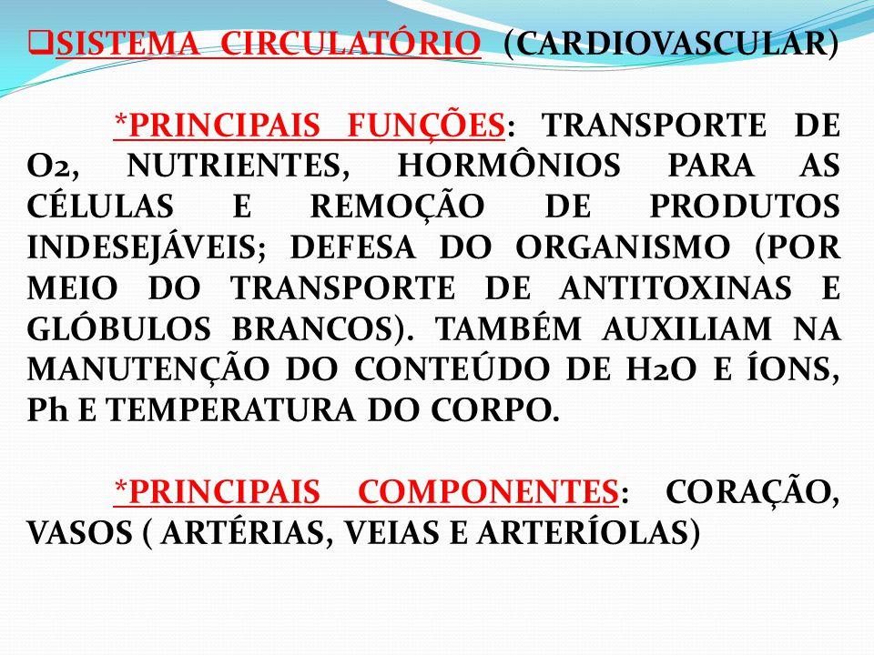 SISTEMA CIRCULATÓRIO (CARDIOVASCULAR)