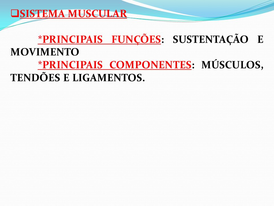 SISTEMA MUSCULAR. PRINCIPAIS FUNÇÕES: SUSTENTAÇÃO E MOVIMENTO