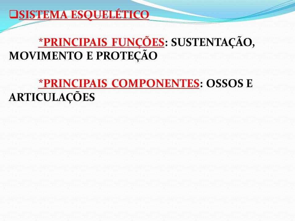 SISTEMA ESQUELÉTICO *PRINCIPAIS FUNÇÕES: SUSTENTAÇÃO, MOVIMENTO E PROTEÇÃO *PRINCIPAIS COMPONENTES: OSSOS E ARTICULAÇÕES