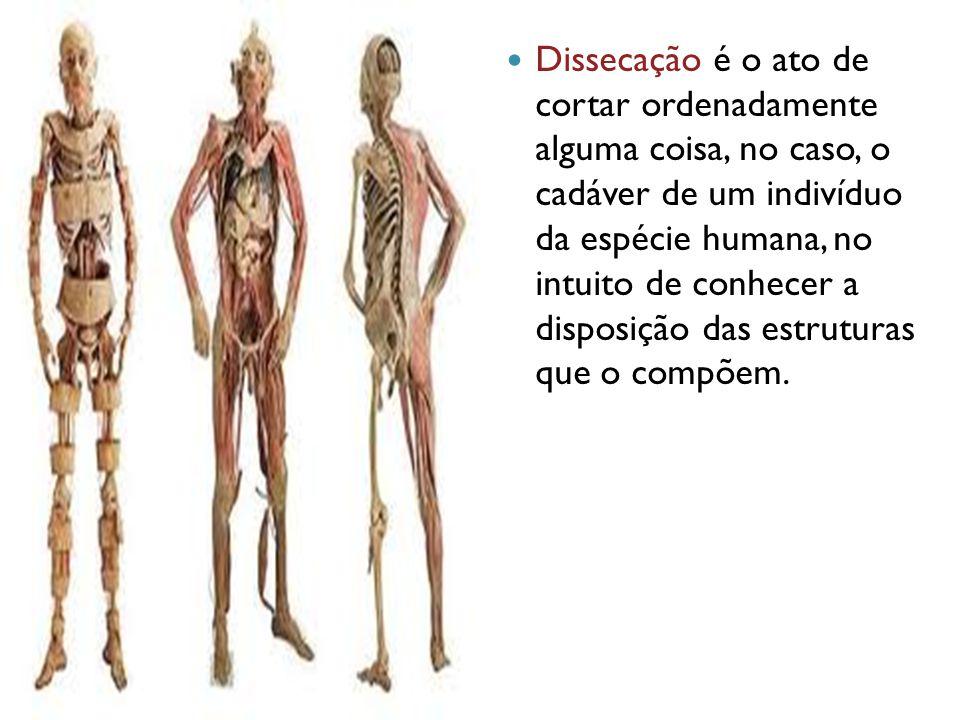 Dissecação é o ato de cortar ordenadamente alguma coisa, no caso, o cadáver de um indivíduo da espécie humana, no intuito de conhecer a disposição das estruturas que o compõem.