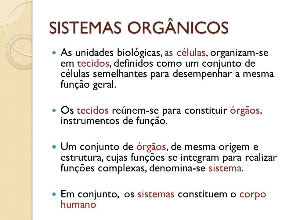 SISTEMAS ORGÂNICOS