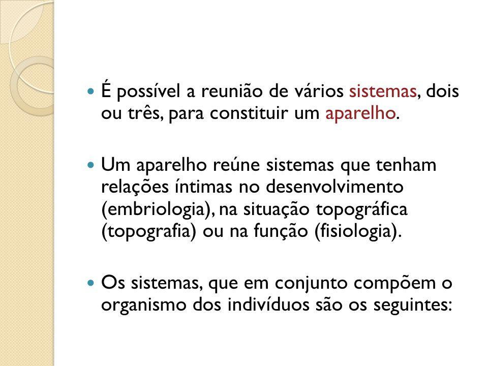 É possível a reunião de vários sistemas, dois ou três, para constituir um aparelho.
