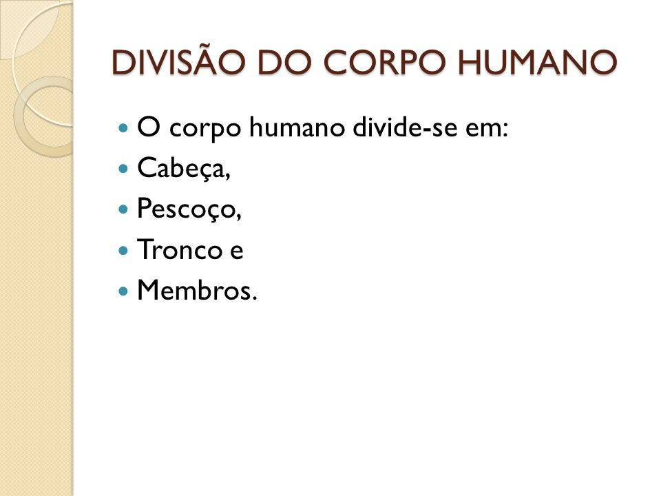 DIVISÃO DO CORPO HUMANO