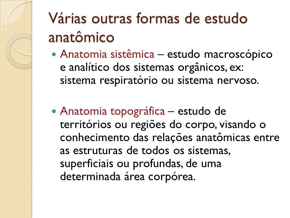 Várias outras formas de estudo anatômico