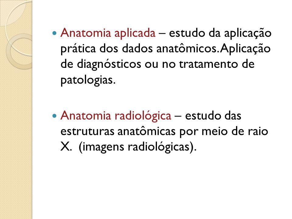Anatomia aplicada – estudo da aplicação prática dos dados anatômicos