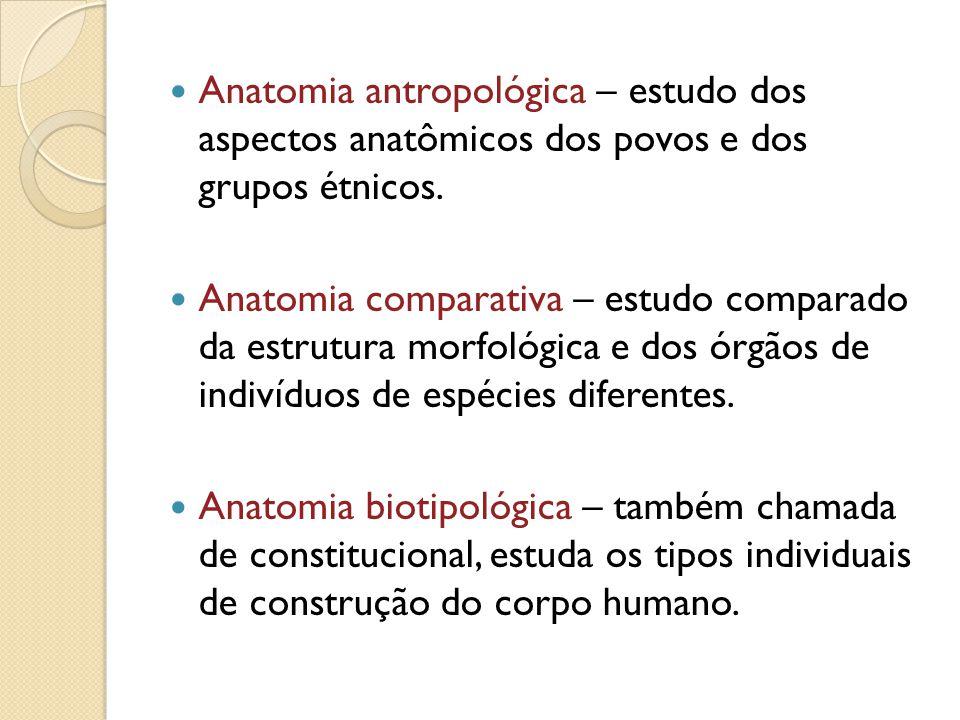 Anatomia antropológica – estudo dos aspectos anatômicos dos povos e dos grupos étnicos.