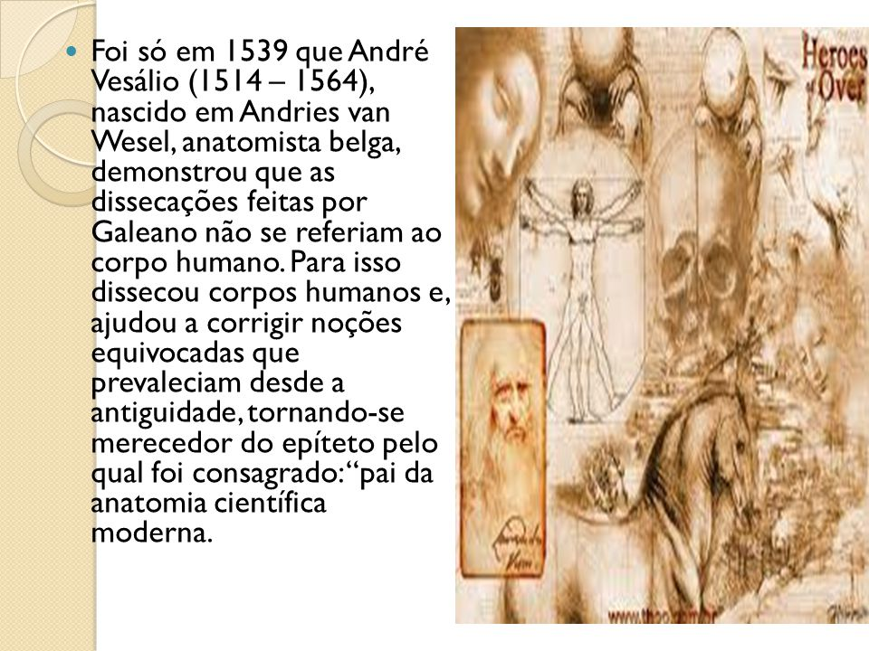 Foi só em 1539 que André Vesálio (1514 – 1564), nascido em Andries van Wesel, anatomista belga, demonstrou que as dissecações feitas por Galeano não se referiam ao corpo humano.