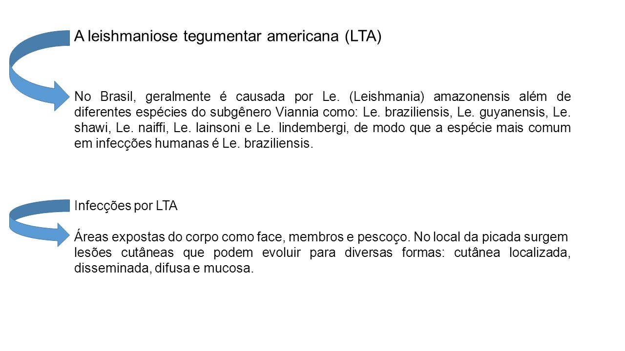 A leishmaniose tegumentar americana (LTA)