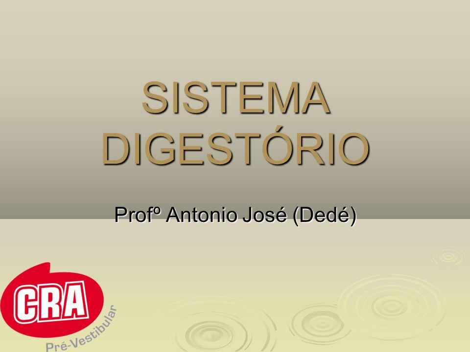 Profº Antonio José (Dedé)