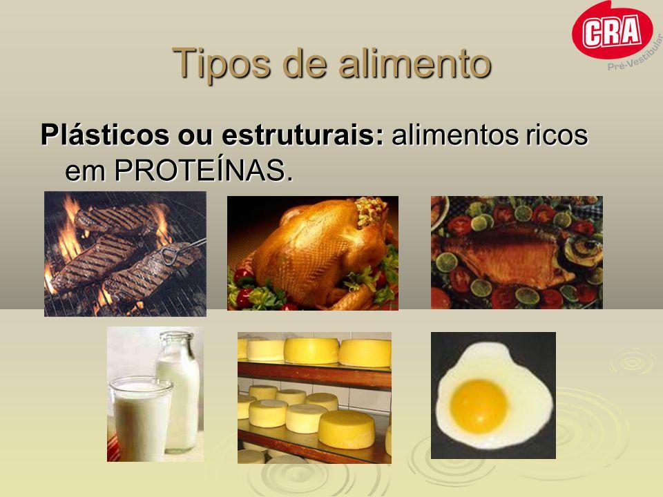 Tipos de alimento Plásticos ou estruturais: alimentos ricos em PROTEÍNAS.