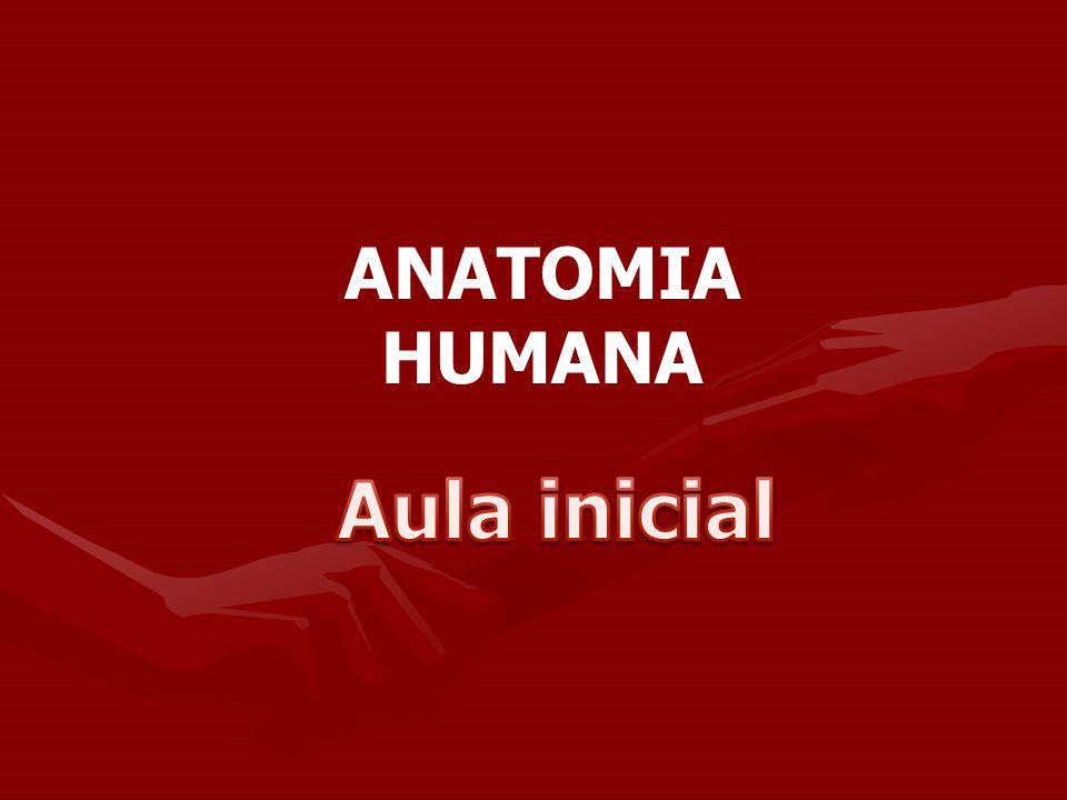 ANATOMIA HUMANA Aula inicial