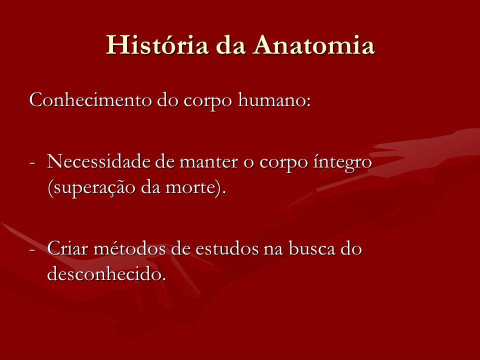 História da Anatomia Conhecimento do corpo humano: