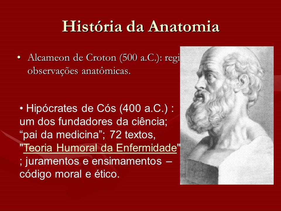 História da Anatomia Alcameon de Croton (500 a.C.): registros de observações anatômicas.