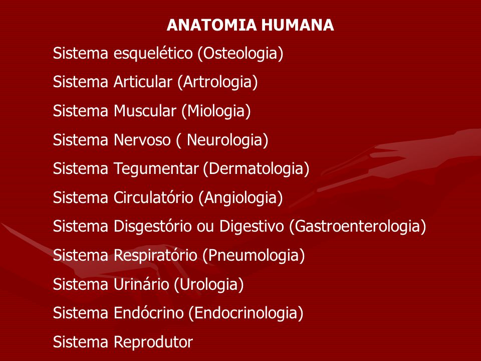 ANATOMIA HUMANA Sistema esquelético (Osteologia) Sistema Articular (Artrologia) Sistema Muscular (Miologia)