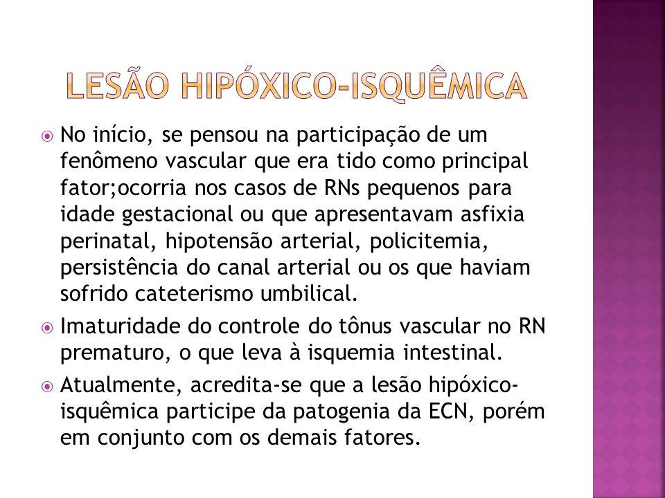 Lesão Hipóxico-isquêmica