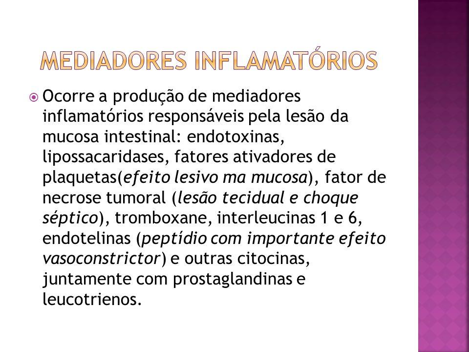 Mediadores inflamatórios