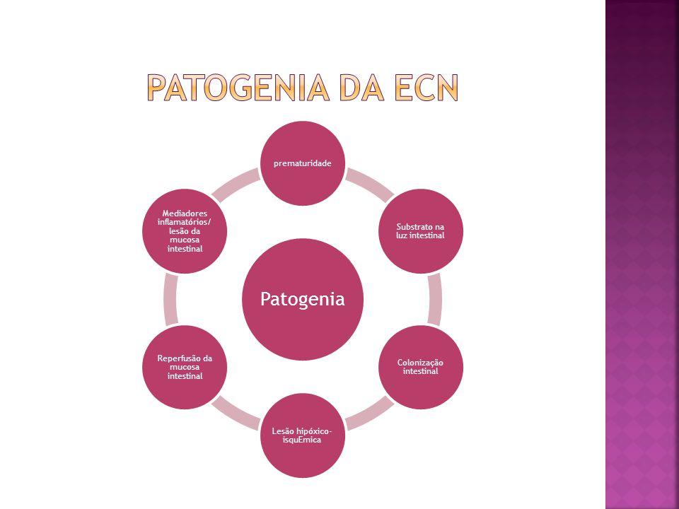 PATOGENIA DA ECN Patogenia prematuridade Substrato na luz intestinal