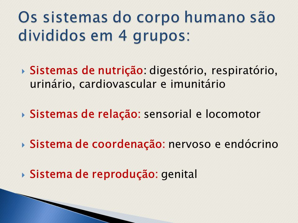 Os sistemas do corpo humano são divididos em 4 grupos: