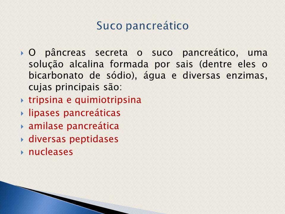 Suco pancreático