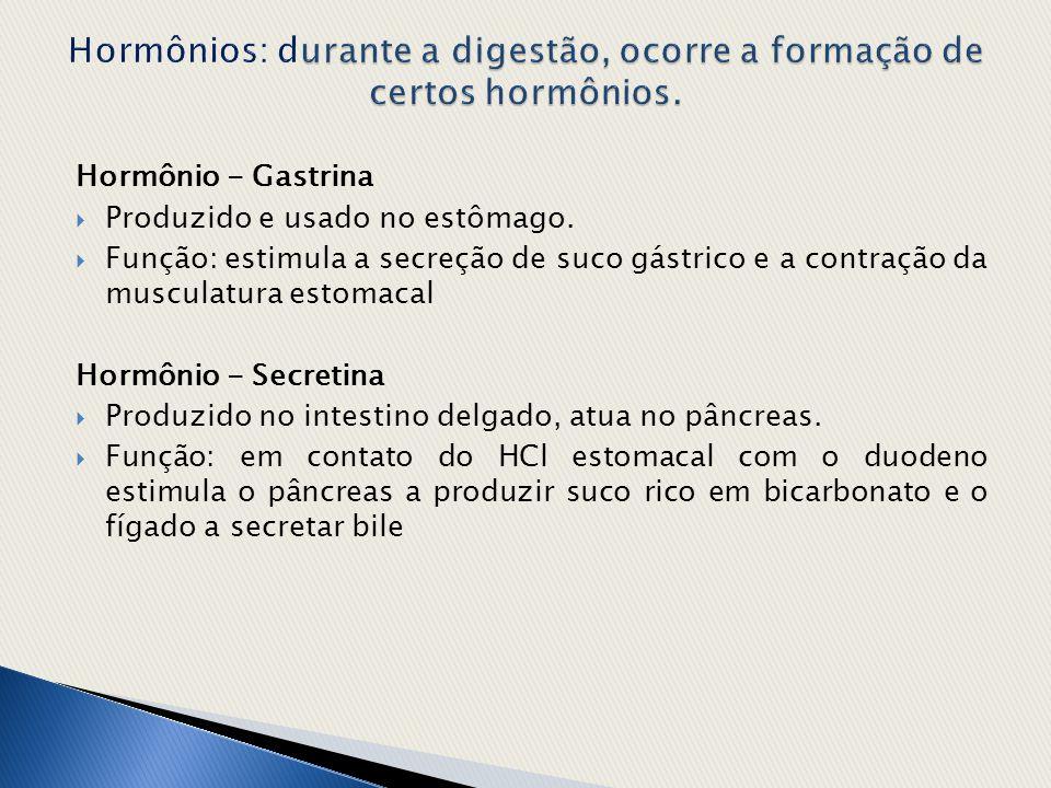 Hormônios: durante a digestão, ocorre a formação de certos hormônios.