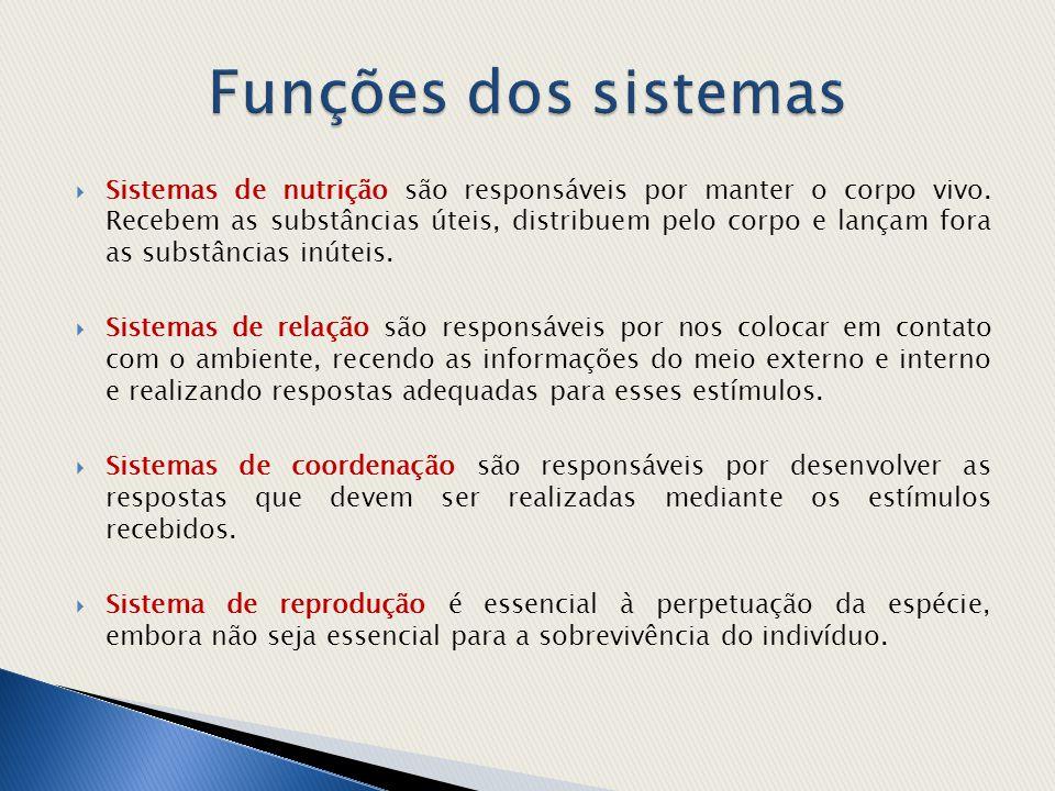 Funções dos sistemas