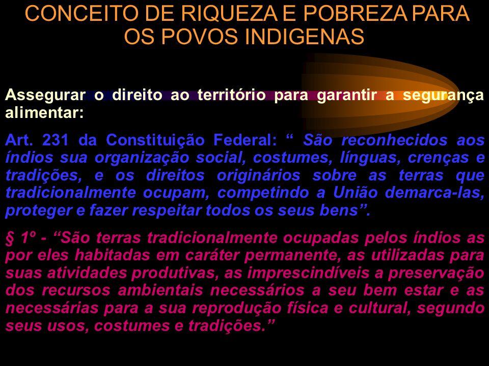 CONCEITO DE RIQUEZA E POBREZA PARA OS POVOS INDIGENAS
