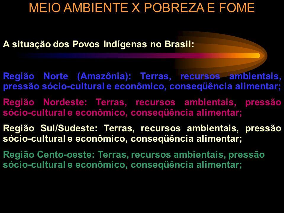 MEIO AMBIENTE X POBREZA E FOME