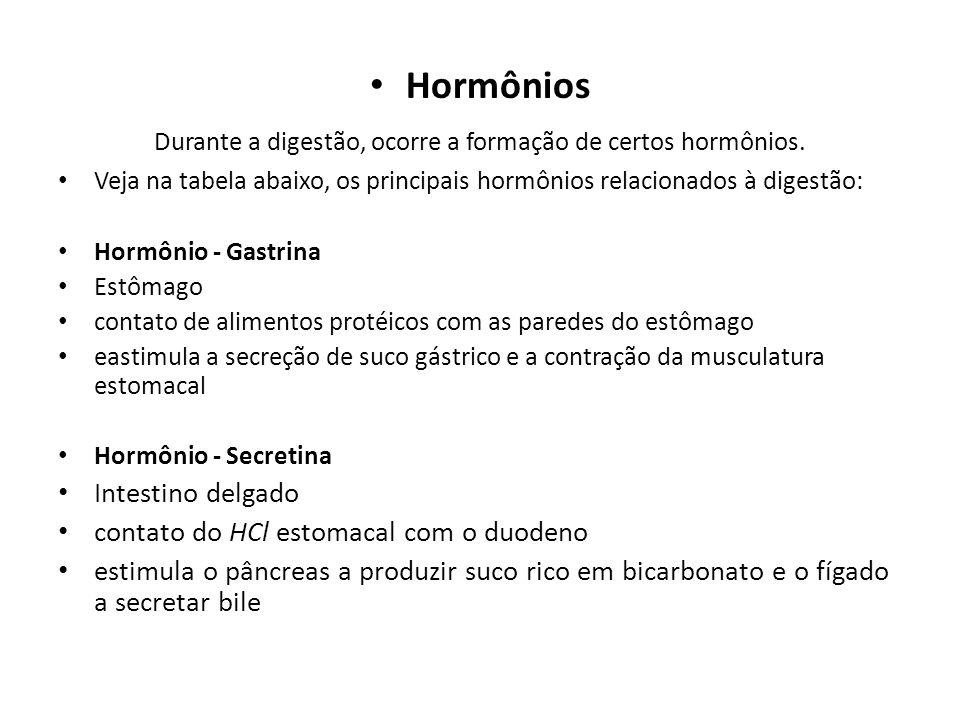 Durante a digestão, ocorre a formação de certos hormônios.