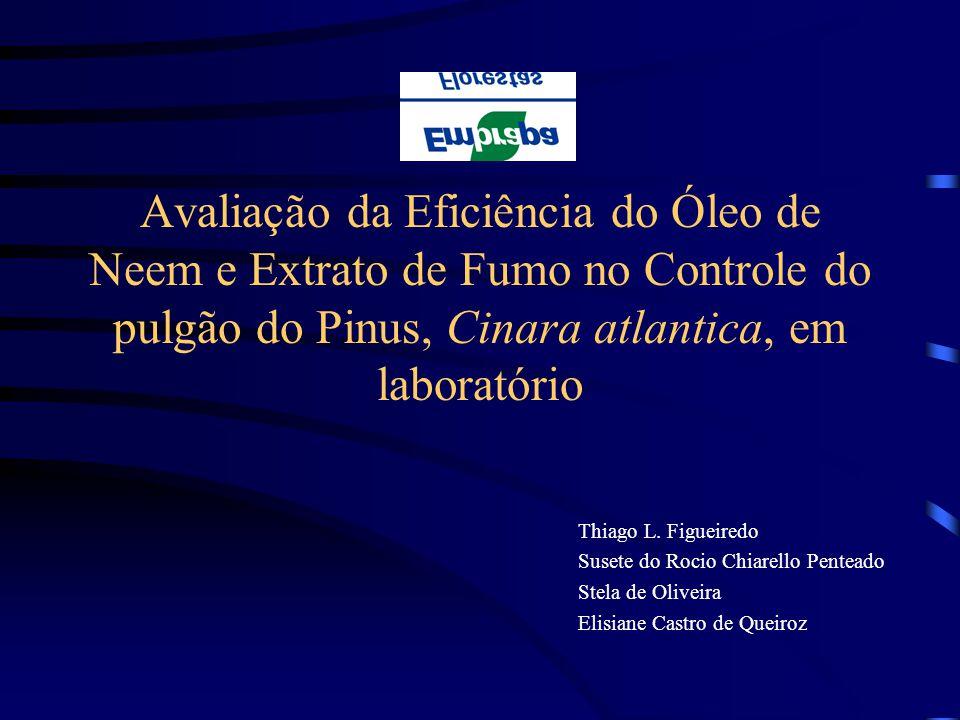 Avaliação da Eficiência do Óleo de Neem e Extrato de Fumo no Controle do pulgão do Pinus, Cinara atlantica, em laboratório