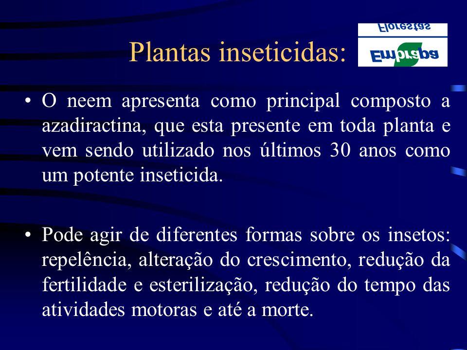 Plantas inseticidas:
