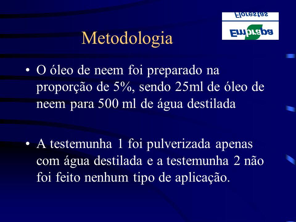 Metodologia O óleo de neem foi preparado na proporção de 5%, sendo 25ml de óleo de neem para 500 ml de água destilada.