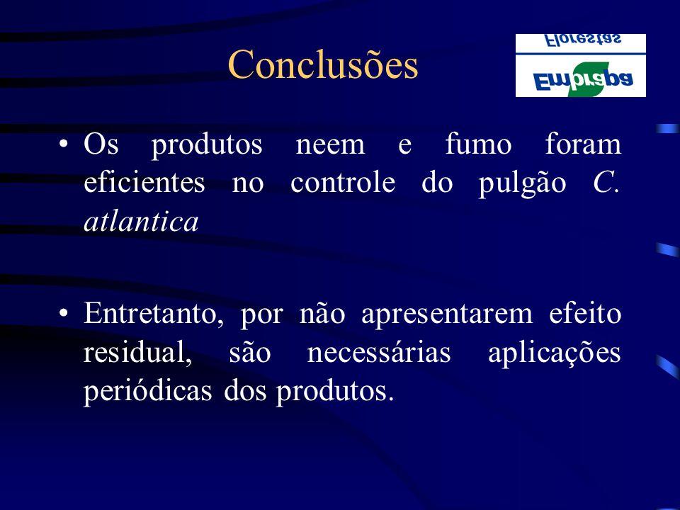 Conclusões Os produtos neem e fumo foram eficientes no controle do pulgão C. atlantica.