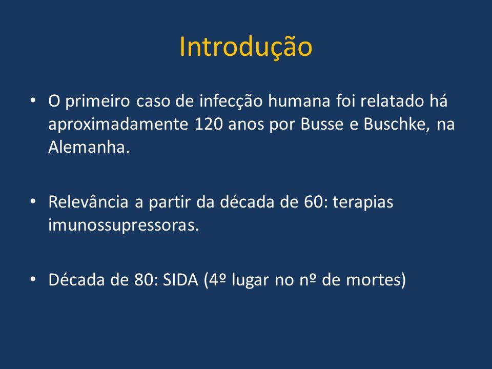 Introdução O primeiro caso de infecção humana foi relatado há aproximadamente 120 anos por Busse e Buschke, na Alemanha.