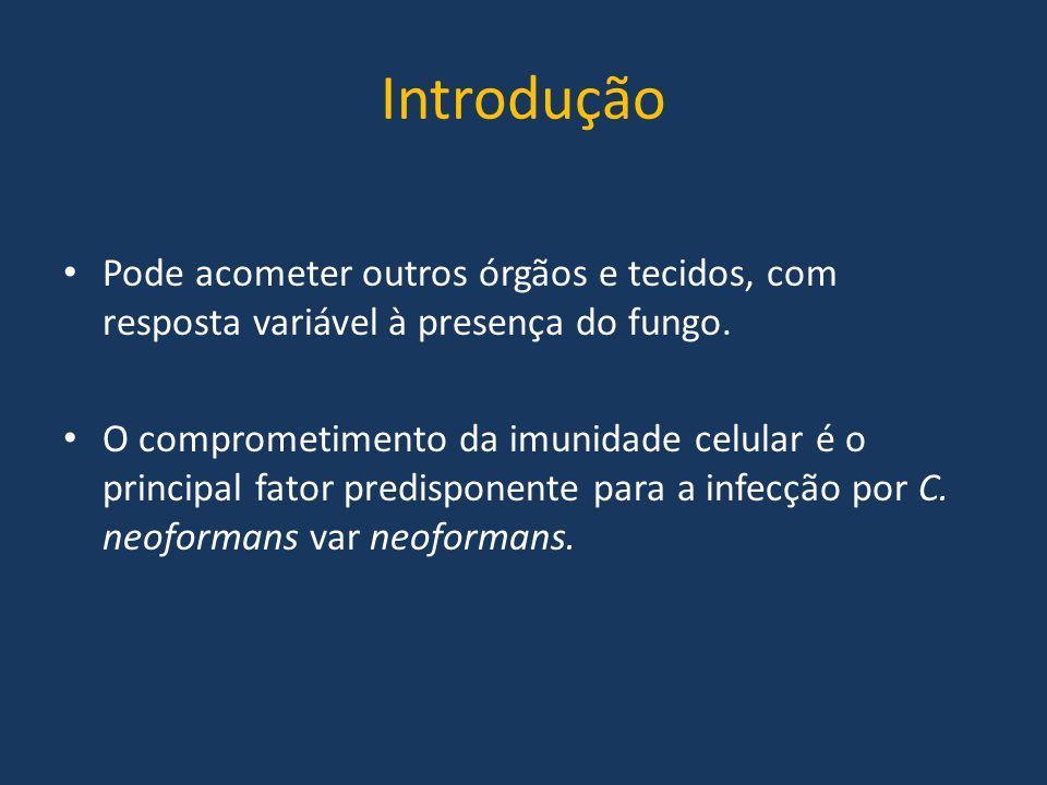 Introdução Pode acometer outros órgãos e tecidos, com resposta variável à presença do fungo.