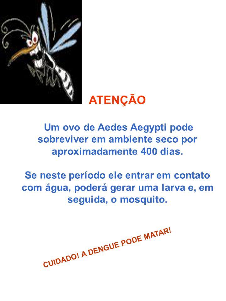 ATENÇÃO Um ovo de Aedes Aegypti pode sobreviver em ambiente seco por aproximadamente 400 dias.