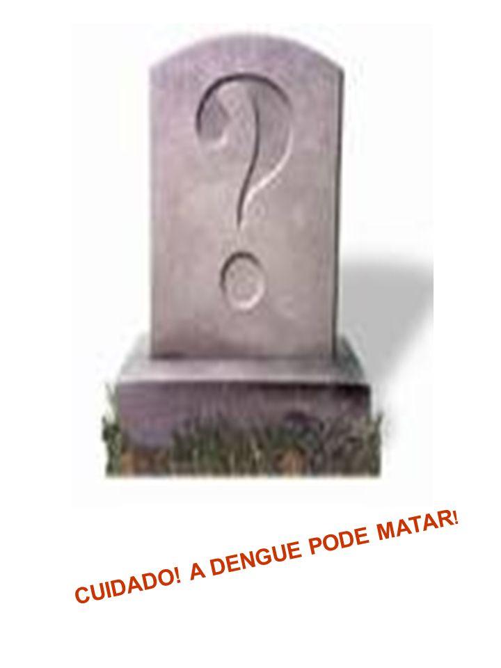 CUIDADO! A DENGUE PODE MATAR!
