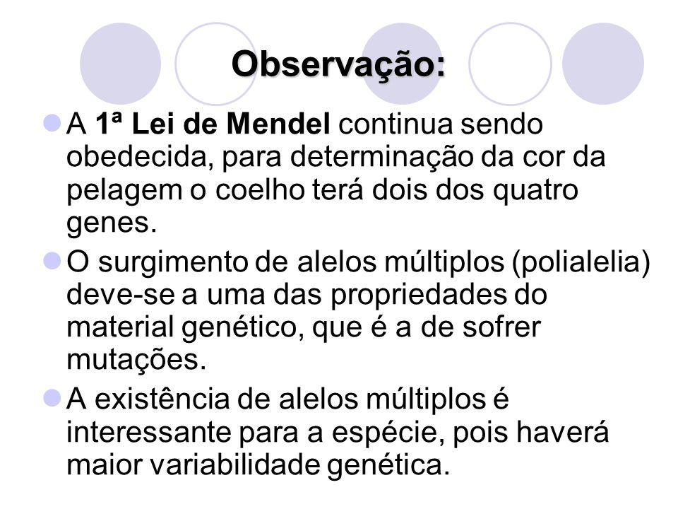 Observação: A 1ª Lei de Mendel continua sendo obedecida, para determinação da cor da pelagem o coelho terá dois dos quatro genes.