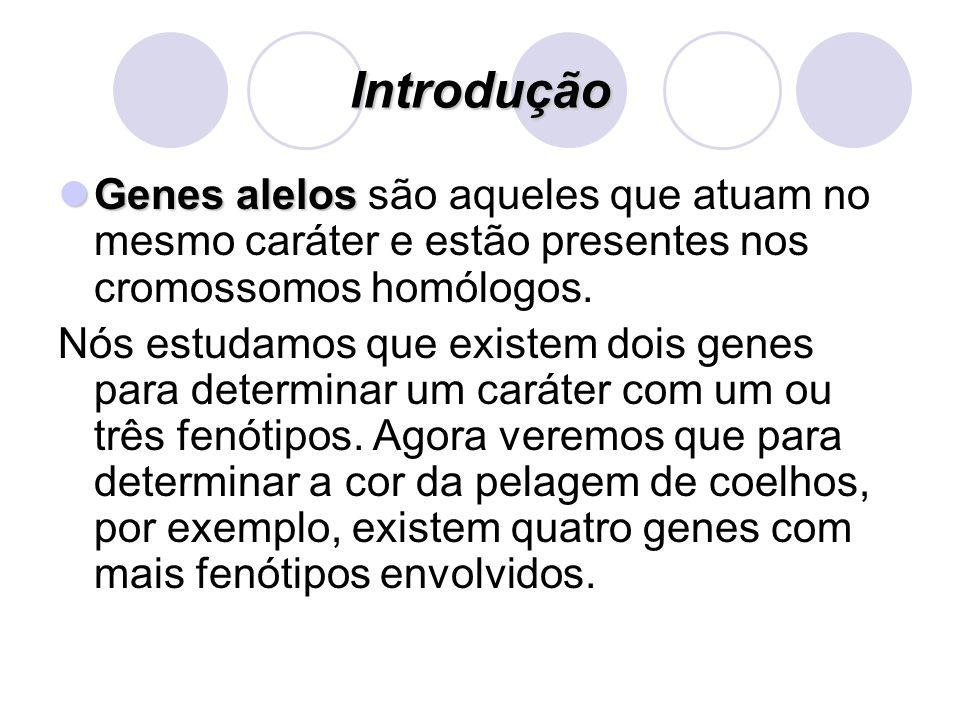 Introdução Genes alelos são aqueles que atuam no mesmo caráter e estão presentes nos cromossomos homólogos.