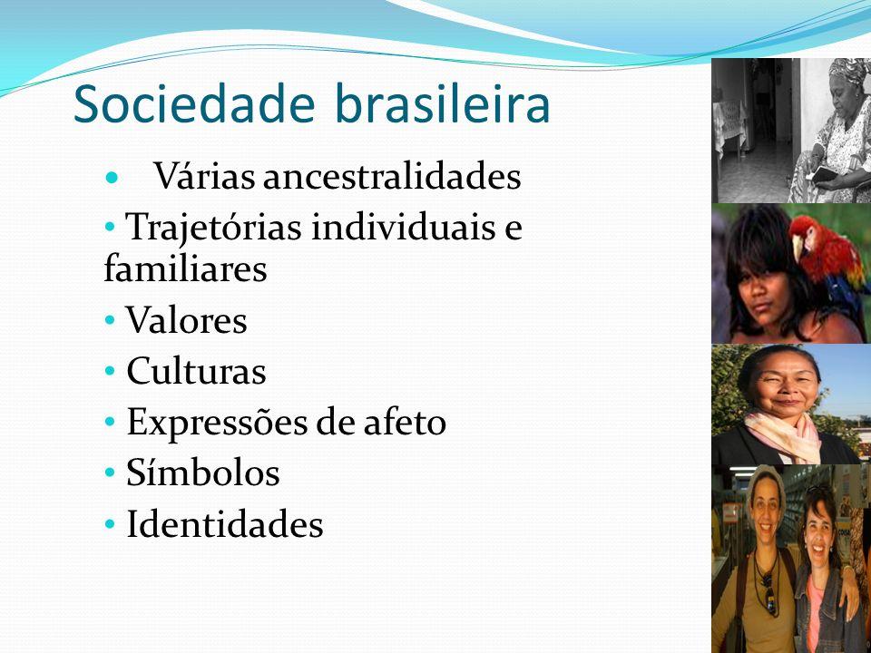 Sociedade brasileira Trajetórias individuais e familiares Valores