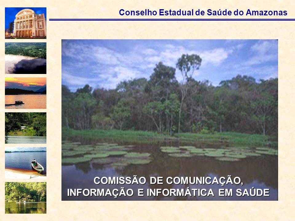 COMISSÃO DE COMUNICAÇÃO, INFORMAÇÃO E INFORMÁTICA EM SAÚDE