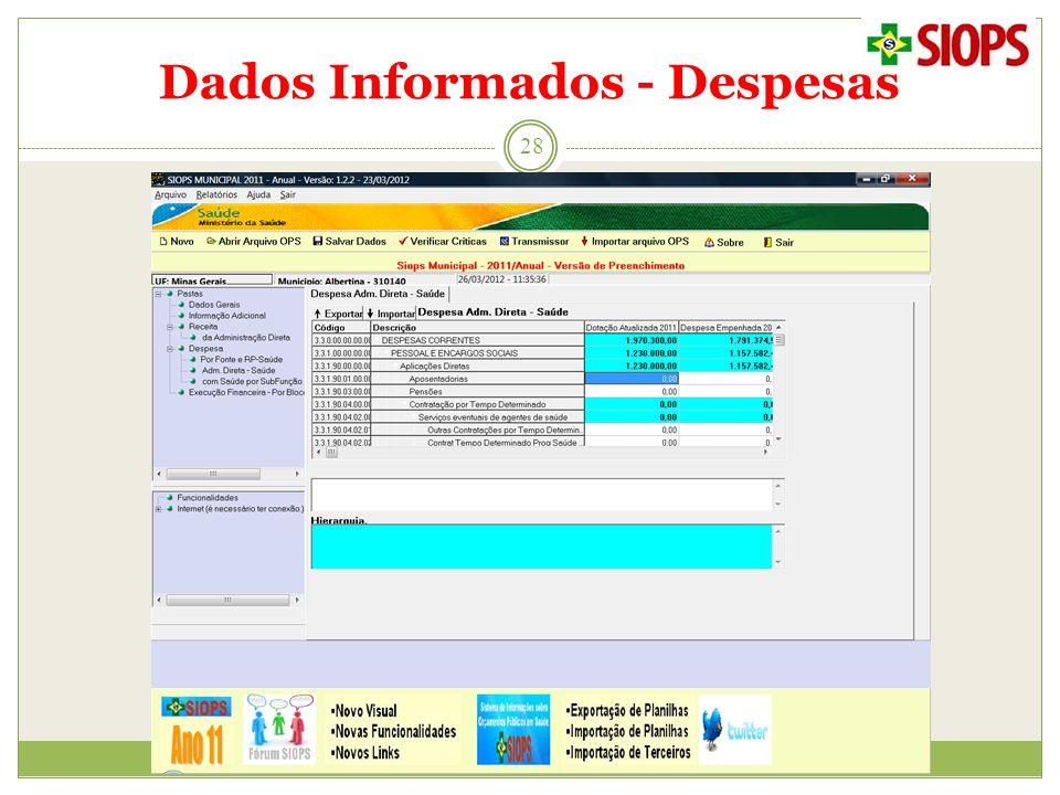 Dados Informados - Despesas