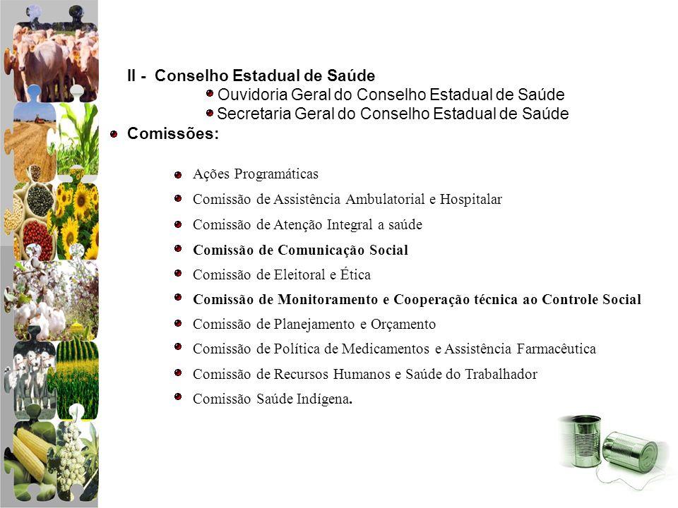 II - Conselho Estadual de Saúde