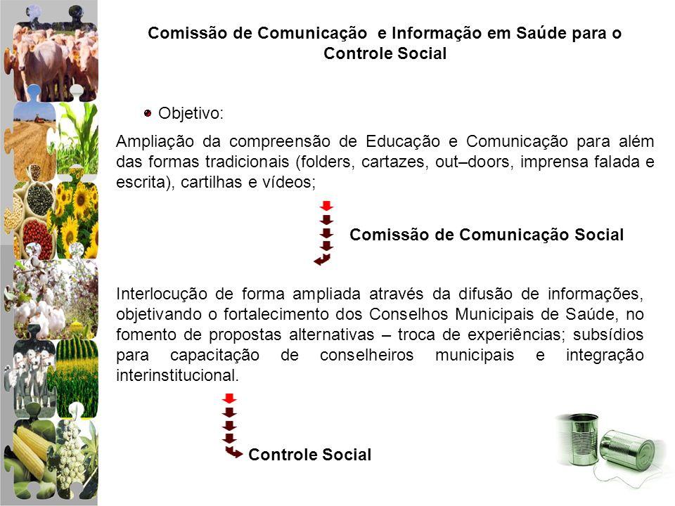 Comissão de Comunicação e Informação em Saúde para o Controle Social